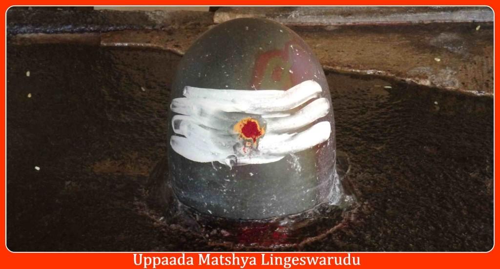 Uppaada Matsya Lingeswarudu