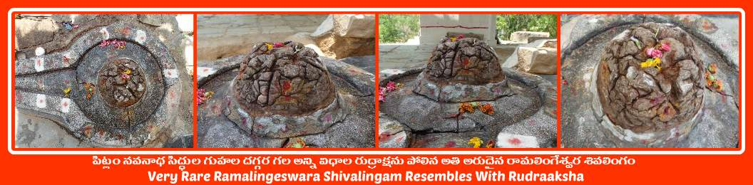 China Kodalgal (Pitlam) Navanatha Siddha Caves-13