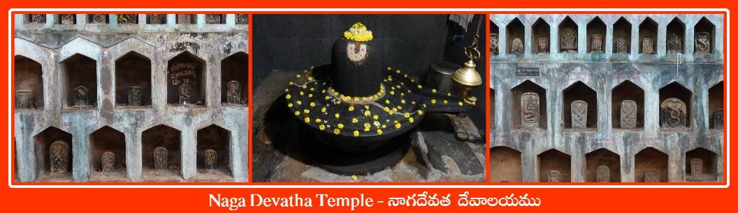 Naga Devatha Temple Gokarna