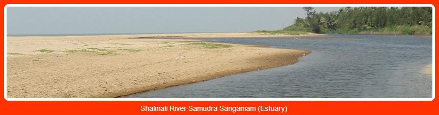 Shalmali River Samudra Sangamam (Estuary)