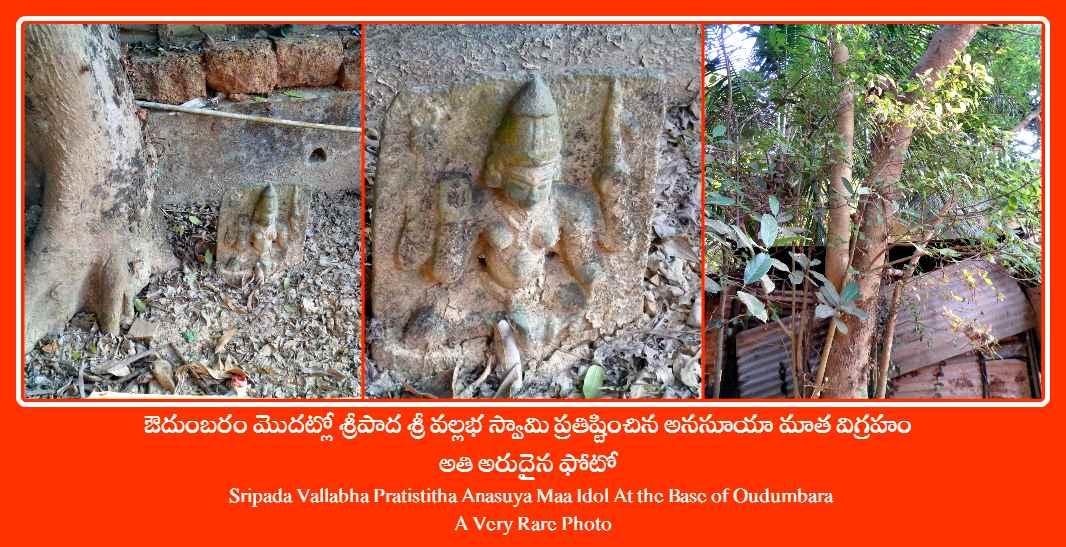Sripada Vallabha Pratistitha Anasuya Maa Idol At the Base of Oudumbara - Gokarna