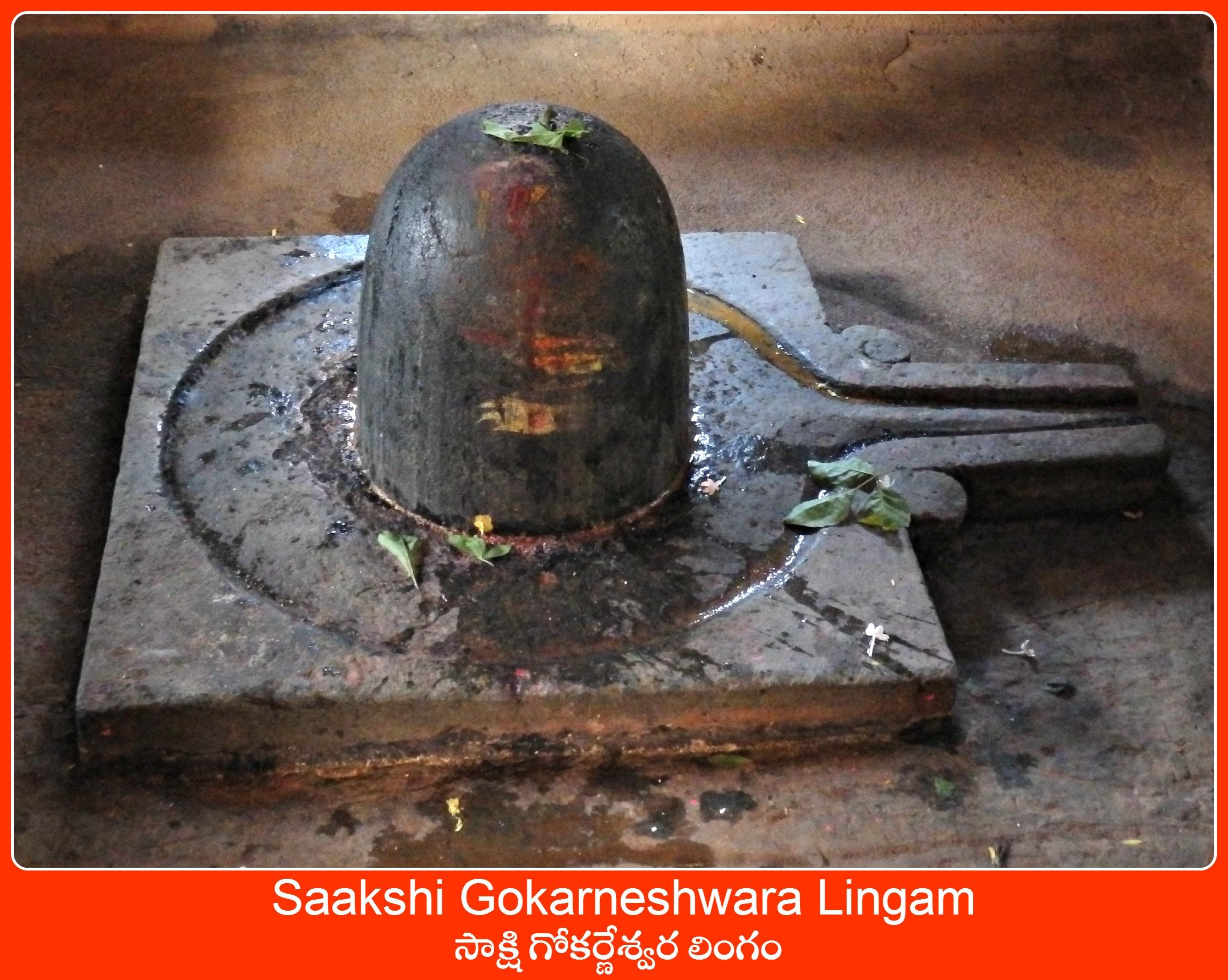 saakshi Gokarneshwara Lingam