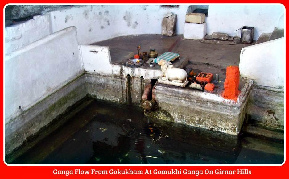 gomukhi ganga flow