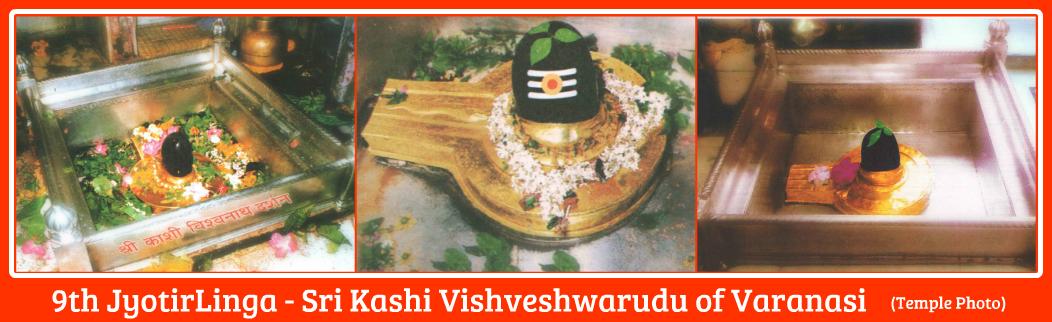 Kashi3